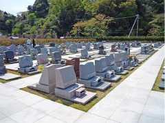 横浜永久の杜の画像