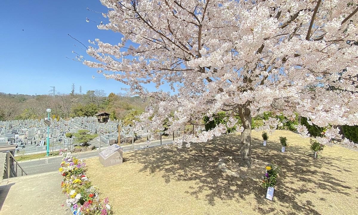 神戸聖地霊園の画像1