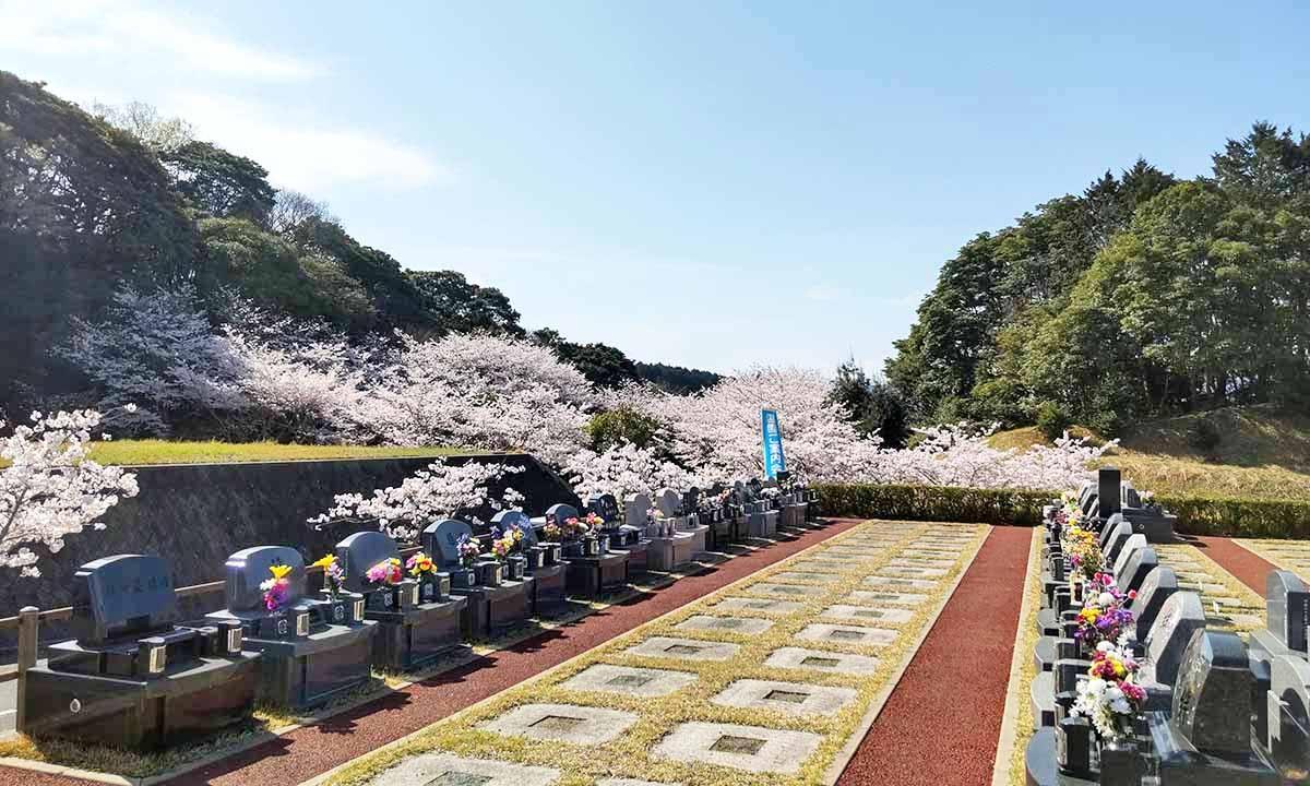 百合ヶ丘霊園の画像1