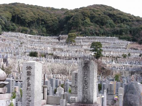 鷲峰山 高台寺の画像1