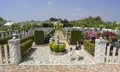 第4期 美原東ロイヤルメモリアルパークの画像