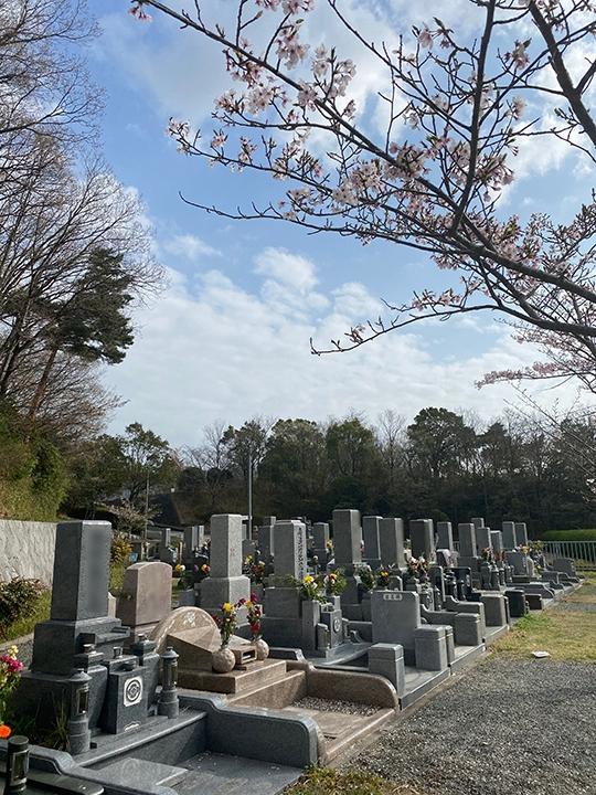 神戸市立 鵯越墓園の画像2