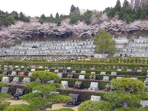 成田市営 いずみ聖地公園の画像2