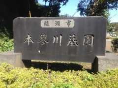 綾瀬市営 本蓼川墓園