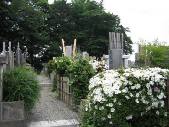 さいたま市営 善前墓地|園内の墓域風景
