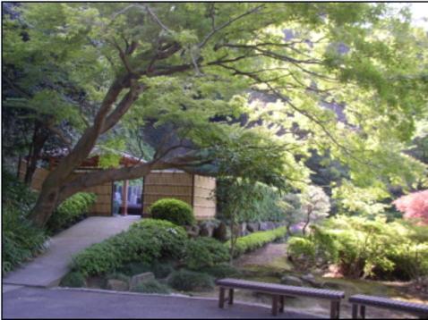 臨済宗建長寺派 長寿寺の画像