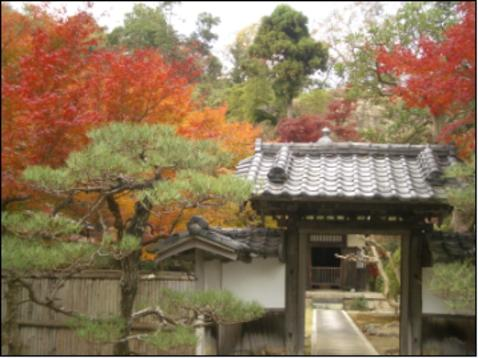 臨済宗建長寺派 長寿寺 | 神奈川県鎌倉市