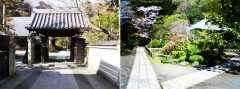 泉谷山 浄光明寺