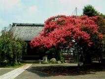 法華山 本興寺