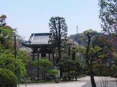 長谷山 海宝院