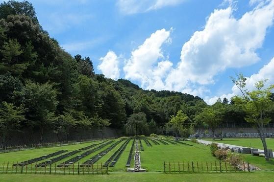 京都天が瀬メモリアル公園|桜下庭園樹木葬