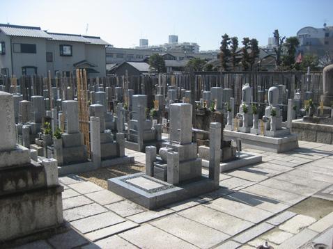 善想寺墓地の画像1