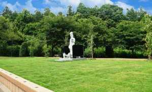 日光・杉並木墓苑『樹木葬』の画像