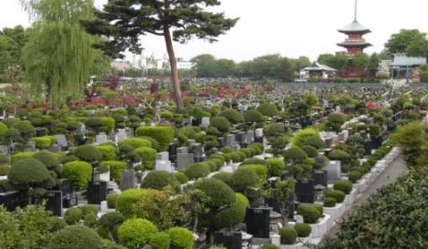 「青葉園(埼玉県さいたま市西区三橋5-1505)」の画像検索結果