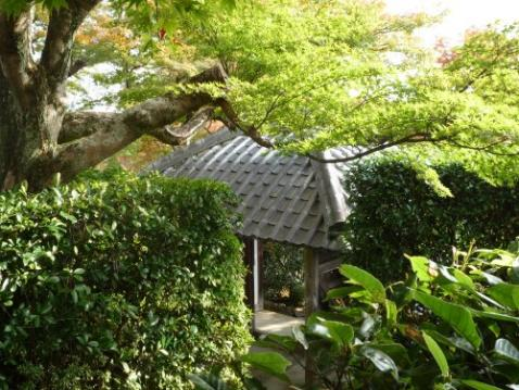 法蔵寺の画像1