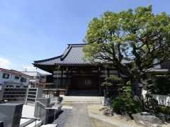 最徳寺の画像