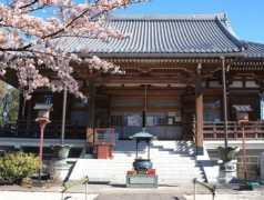 寛永寺 谷中霊園