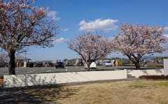 久留米さくら墓苑の画像