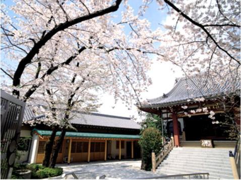 妙圓寺 (妙円寺)