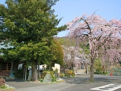 曽我梅林霊園 第Ⅱ期