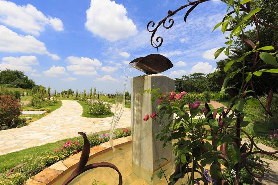 「ふれあいの杜 天空」永代供養墓・樹木葬の画像1