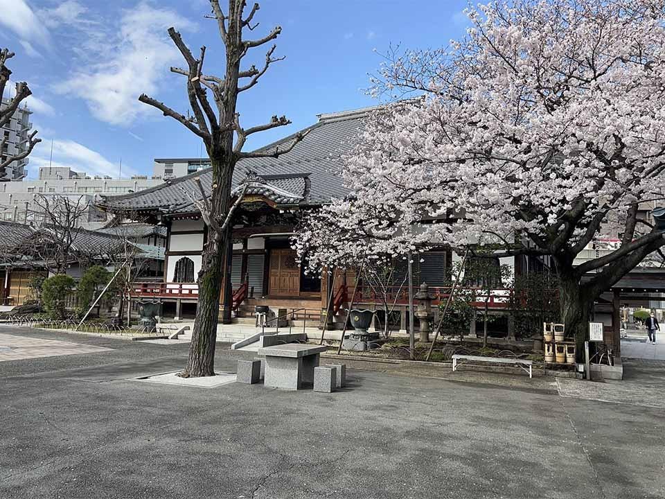 天妙国寺 永代供養納骨堂 鳳凰堂の画像1