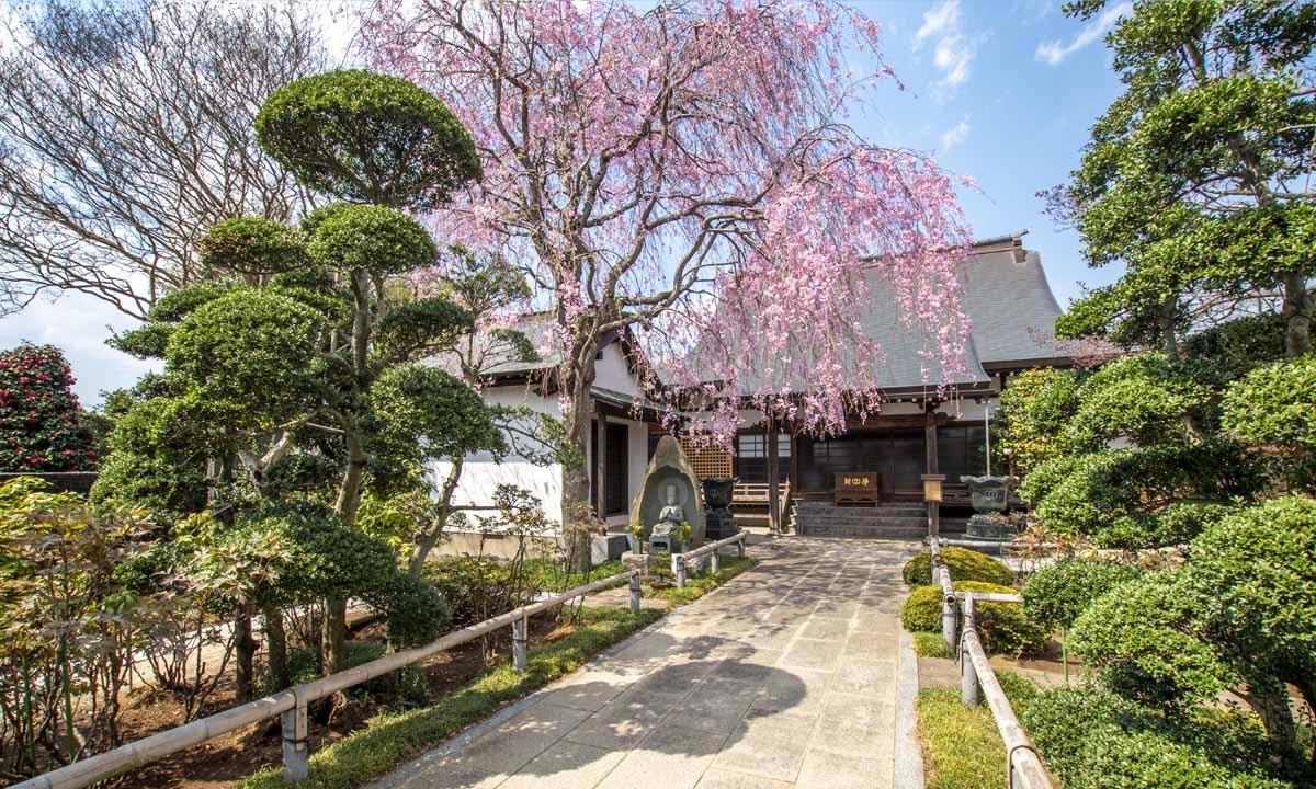 宝蔵院墓苑 永代供養墓・樹木葬