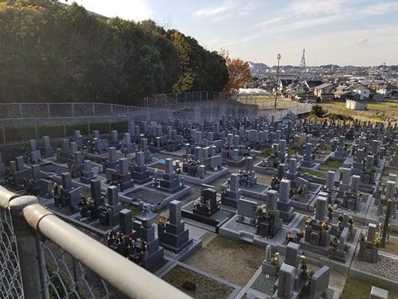 山中田墓地
