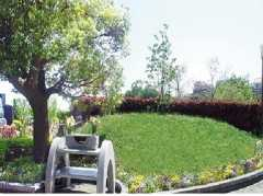 多摩境フォーシーズンメモリアル 樹木葬