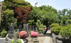 池上本門寺の画像
