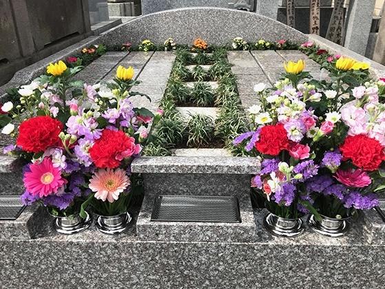 専福寺 永代供養墓・樹木葬墓|四季の花々に包まれます