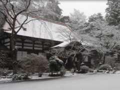 妙興寺霊園の画像