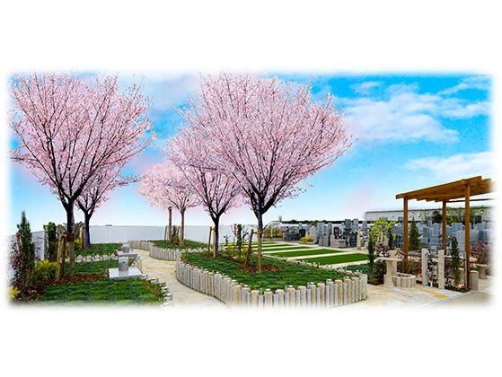 メモリアルパーク観音新町 永代供養 樹木葬「桜」の画像1