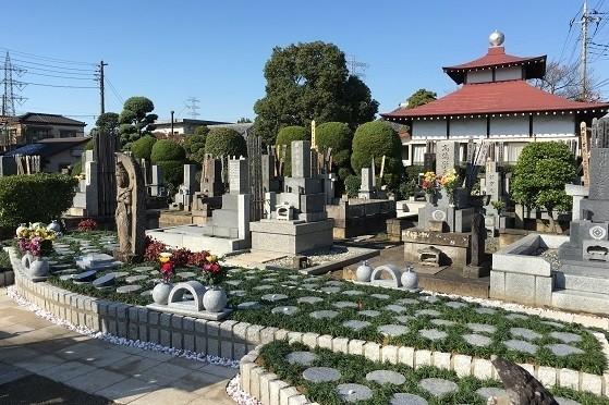 川口新郷樹木葬墓地