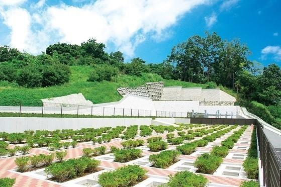 二宮霊園 ひかりの丘|緑豊かな園内は陽の光がふりそそぎ日当たり良好