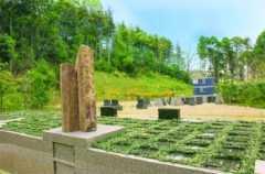 横浜つどいの森 樹木葬