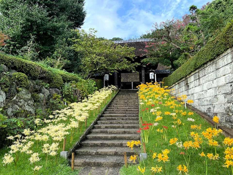 西方寺 のうこつぼ
