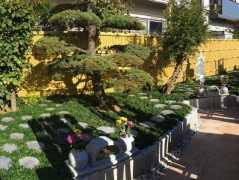 江戸川つつじの郷樹木葬墓地