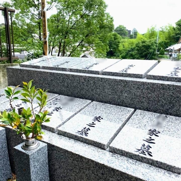 天真寺 個別の永代供養墓