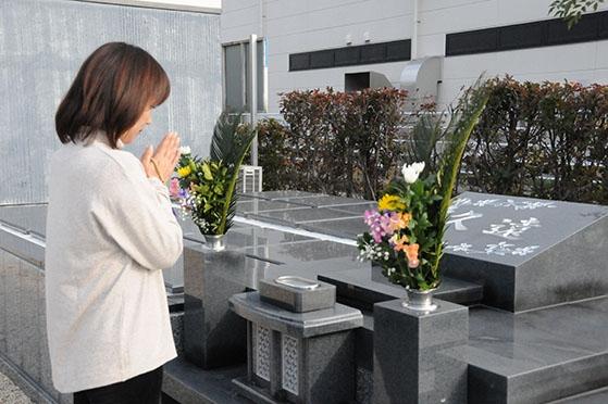 個別永代供養墓 樹木葬霊園「久遠」の画像