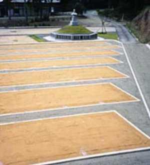 高蔵寺霊園