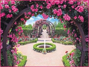 花咲く人気のガーデニング霊園特集