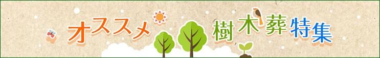 関東・首都圏でオススメの「樹木葬」特集!【いいお墓】