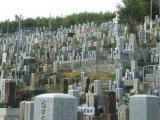 見上げると、多くの墓石が立ち並ぶ