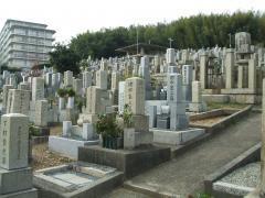 古い墓石から新しい墓石までが混在する園内