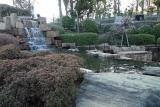 南区と中区の間の池