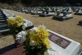 芝生型墓所