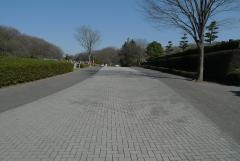 広い園内通路