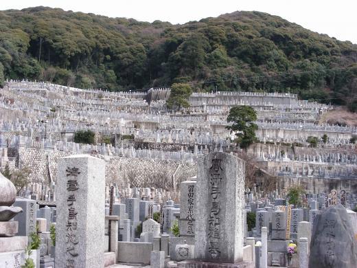 隣接するのは、「東大谷墓地」