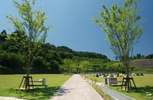 霊園の全景